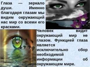 Глаза — зеркало души. Именно благодаря глазам мы видим окружающий нас мир со