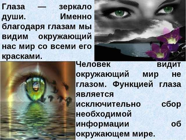 Глаза — зеркало души. Именно благодаря глазам мы видим окружающий нас мир со...