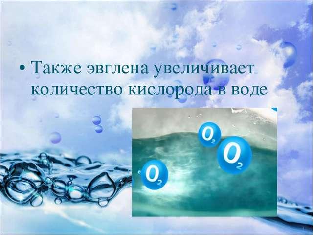 Также эвглена увеличивает количество кислорода в воде