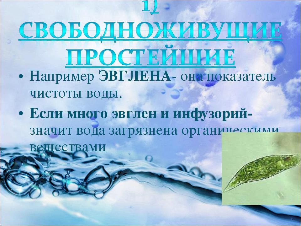 Например ЭВГЛЕНА- она показатель чистоты воды. Если много эвглен и инфузорий-...