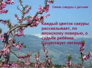 Каждый цветок сакуры рассказывает, по японскому поверью, о судьбе ребёнка. Су