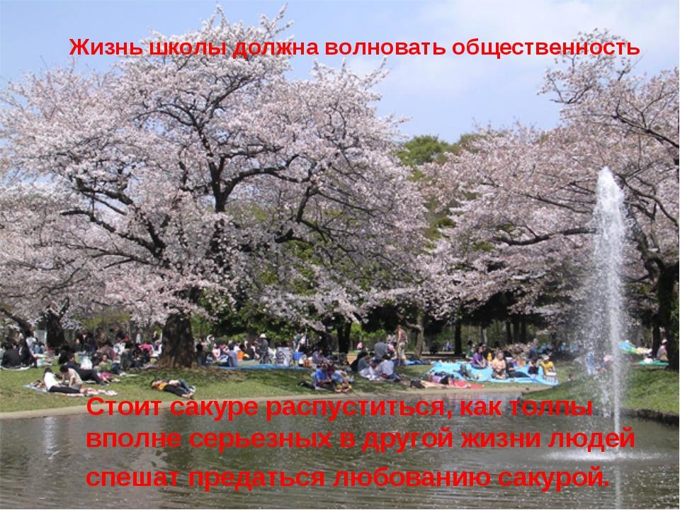 Стоит сакуре распуститься, как толпы вполне серьезных в другой жизни людей сп...