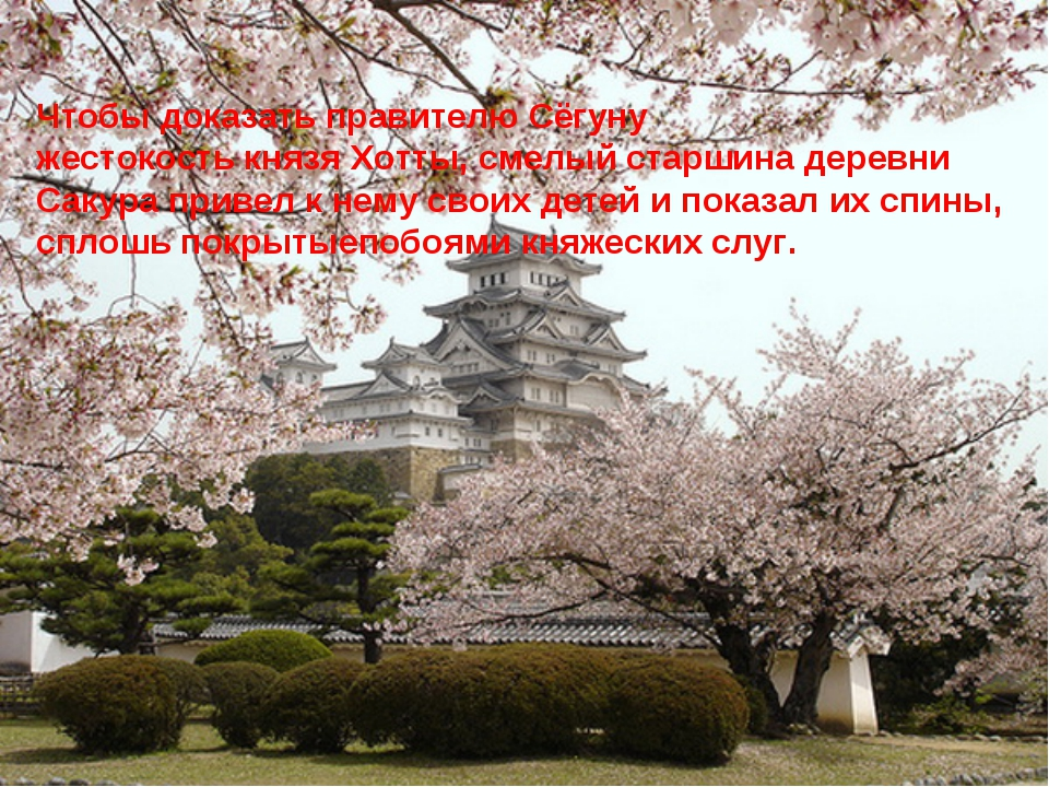 Чтобы доказать правителю Сёгуну жестокость князя Хотты, смелый старшина дерев...