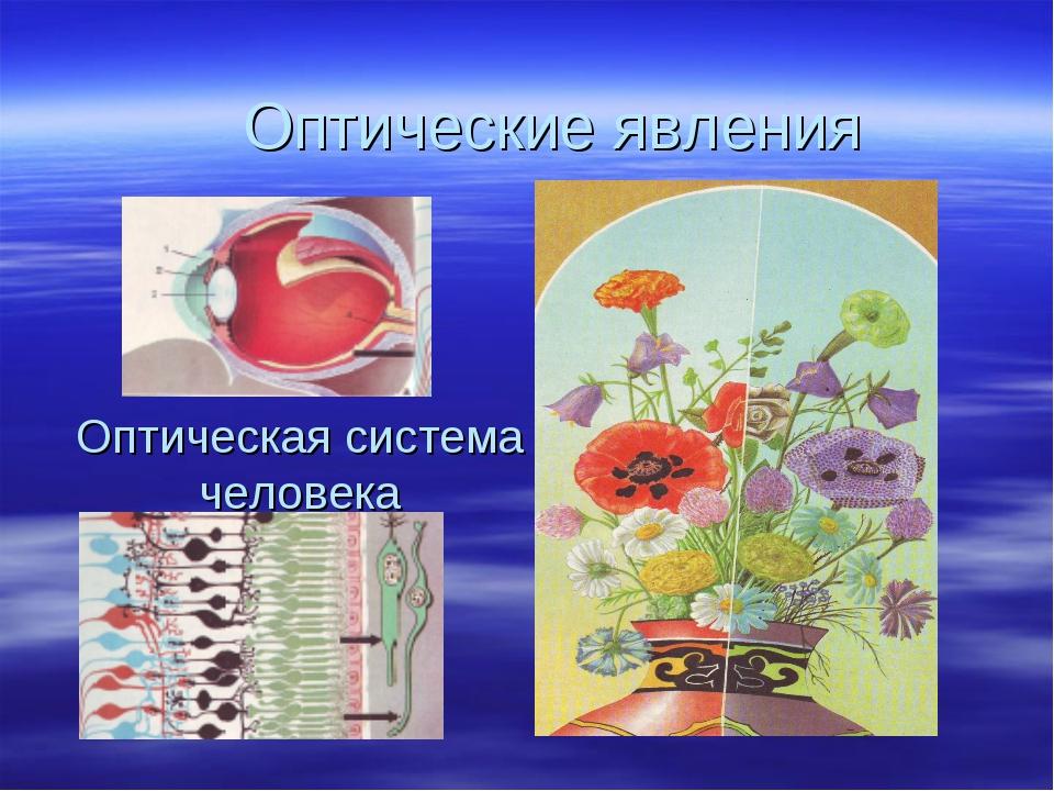 Оптическая система человека Оптические явления