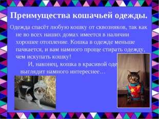 Преимущества кошачьей одежды. Одежда спасёт любую кошку от сквозняков, так ка