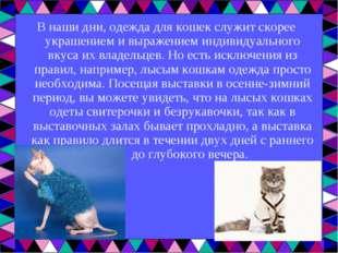 В наши дни, одежда для кошек служит скорее украшением и выражением индивидуал