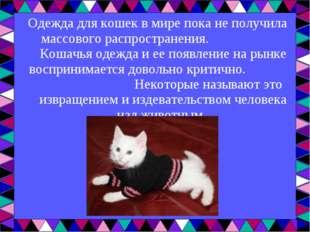 Одежда для кошекв мире пока не получила массового распространения. Кошачья о