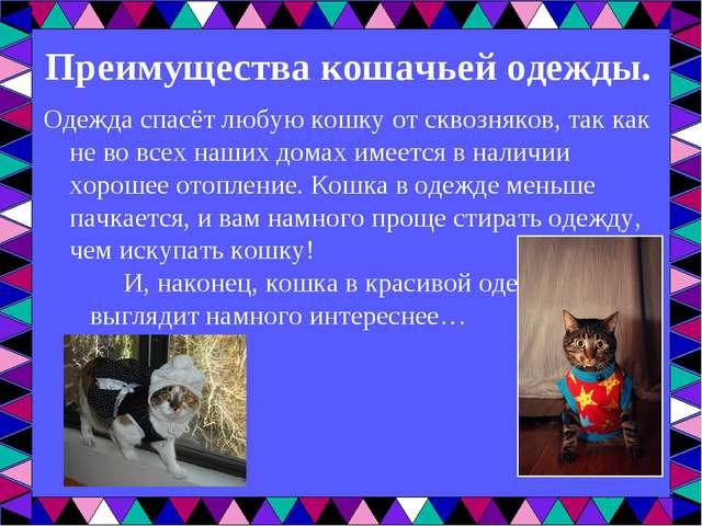 Преимущества кошачьей одежды. Одежда спасёт любую кошку от сквозняков, так ка...