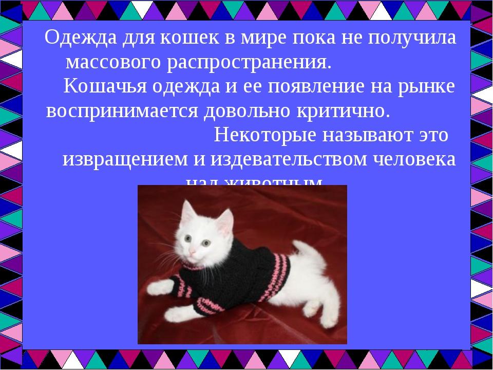 Одежда для кошекв мире пока не получила массового распространения. Кошачья о...