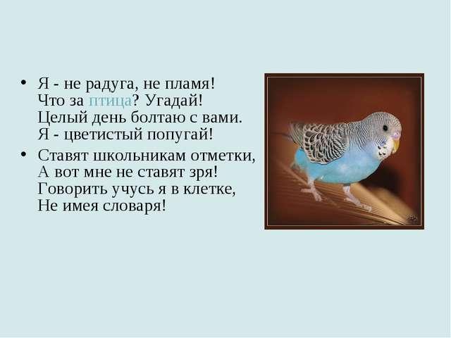 Я - не радуга, не пламя! Что за птица? Угадай! Целый день болтаю с вами. Я -...