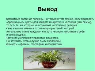 Вывод Комнатные растения полезны, но только в том случае, если подобрать «пра