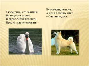 Что за диво, что за птица, На воде она царица, И окрас ей так подстать, Прос