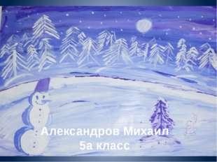 Александров Михаил 5а класс