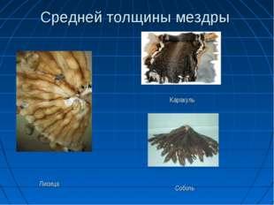 Средней толщины мездры Лисица Каракуль Соболь