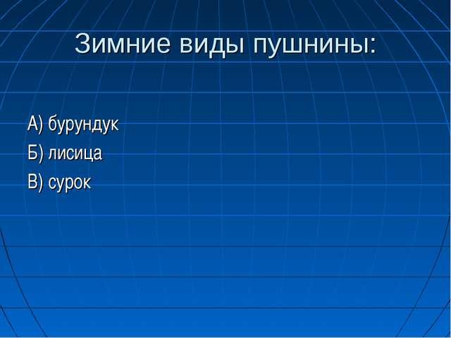 Зимние виды пушнины: А) бурундук Б) лисица В) сурок