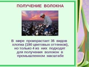 ПОЛУЧЕНИЕ ВОЛОКНА В мире произрастает 35 видов хлопка (190 цветовых оттенков)
