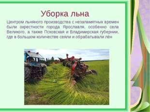 Уборка льна Центром льняного производства с незапамятных времен были окрестно