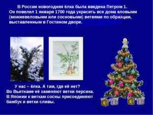 В России новогодняя ёлка была введена Петром 1. Он повелел 1 января 1700 год