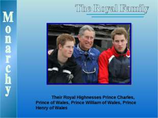 Their Royal Highnesses Prince Charles, Prince of Wales, Prince William of Wa