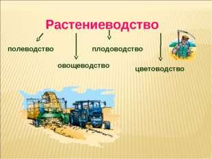 Растениеводство полеводство овощеводство плодоводство цветоводство