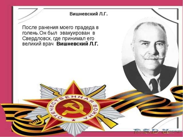 После ранения моего прадеда в голень.Он был эвакуирован в Свердловск, где при...