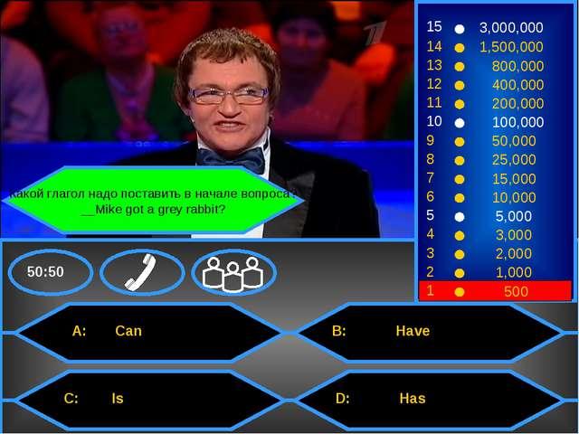 Какой глагол надо поставить в начале вопроса? __Mike got a grey rabbit? 15 1...