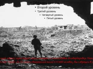 Американский морпех через дыру в стене смотрит на последствия бомбардировки
