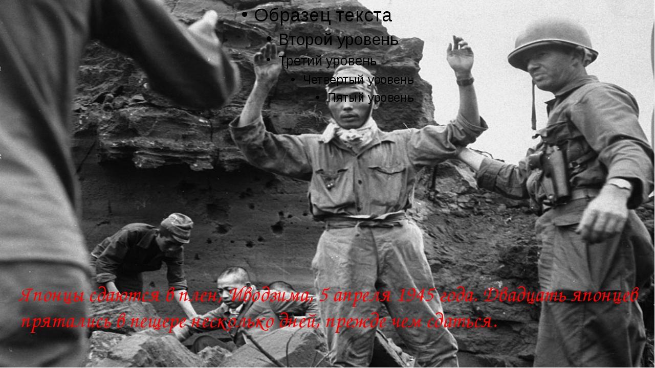 Японцы сдаются в плен, Иводзима, 5 апреля 1945 года. Двадцать японцев прятал...