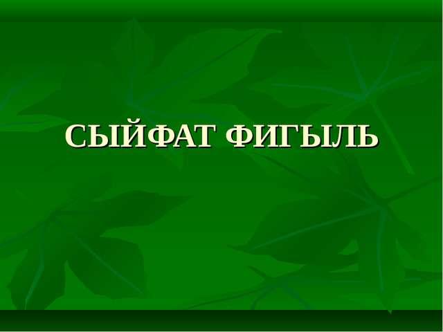 СЫЙФАТ ФИГЫЛЬ