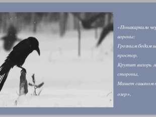 «Понакаркали черные вороны: Грозным бедам широкий простор. Крутит вихорь леса