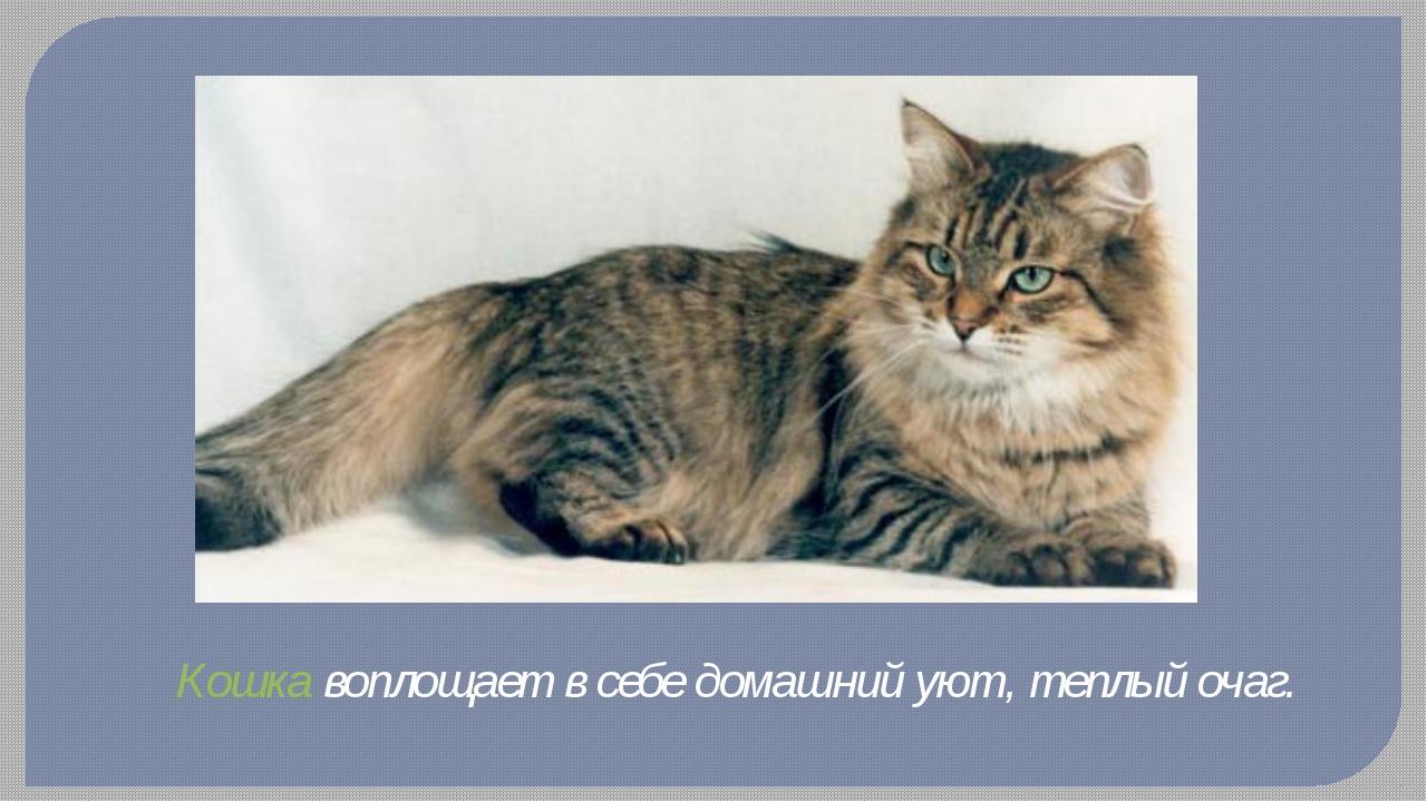 Кошка воплощает в себе домашний уют, теплый очаг.