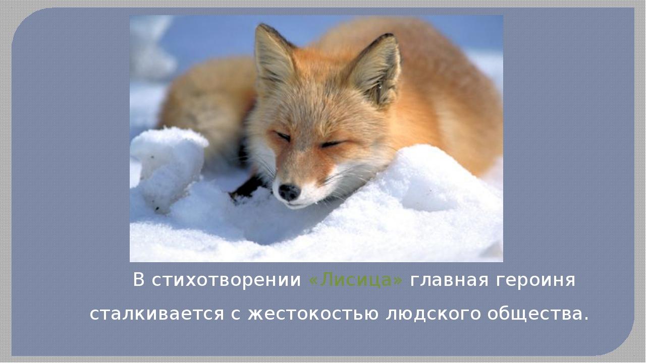 В стихотворении «Лисица» главная героиня сталкивается с жестокостью людского...
