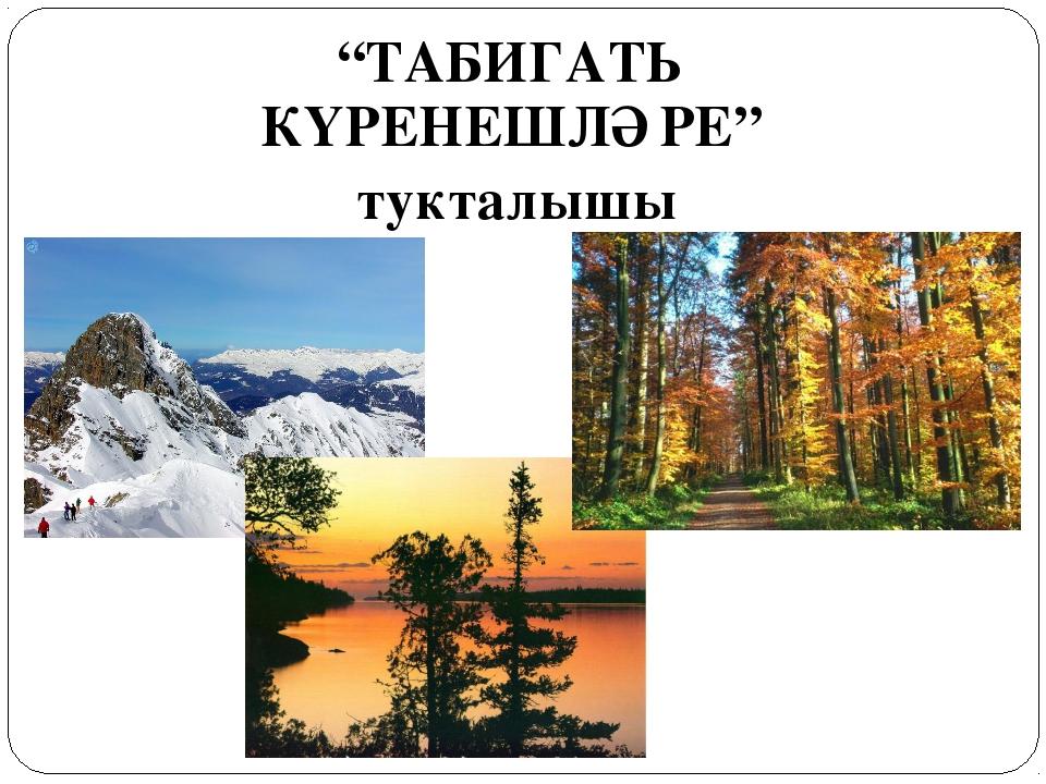 """""""ТАБИГАТЬ КҮРЕНЕШЛӘРЕ"""" тукталышы"""