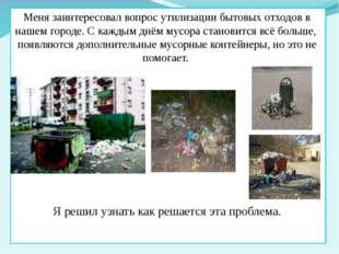 Меня заинтересовал вопрос утилизации бытовых отходов в нашем городе. С кажды