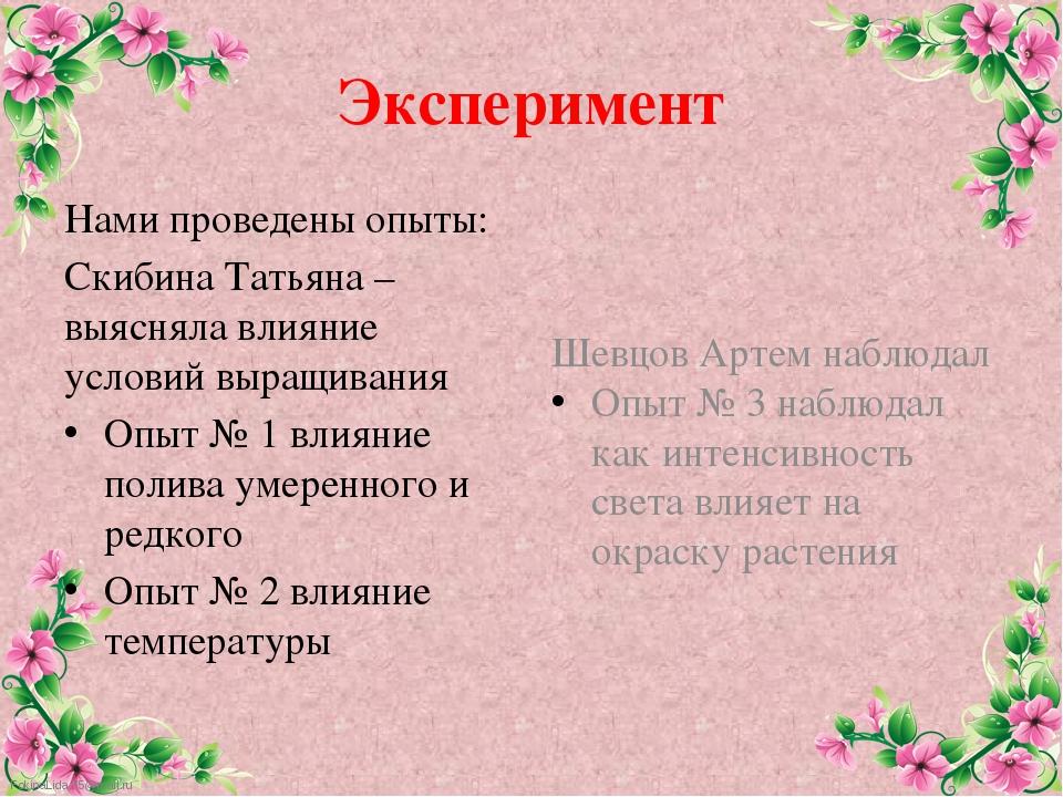 Эксперимент Нами проведены опыты: Скибина Татьяна – выясняла влияние условий...
