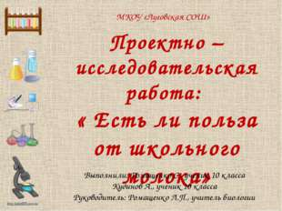 МКОУ «Луговская СОШ» Проектно – исследовательская работа: « Есть ли польза от