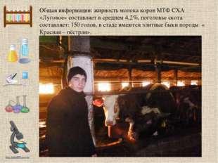 Общая информации: жирность молока коров МТФ СХА «Луговое» составляет в средне