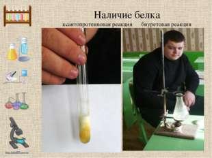 Наличие белка ксантопротеиновая реакция биуретовая реакция http://linda6035.u