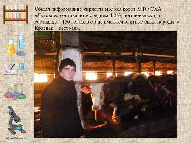Общая информации: жирность молока коров МТФ СХА «Луговое» составляет в средне...