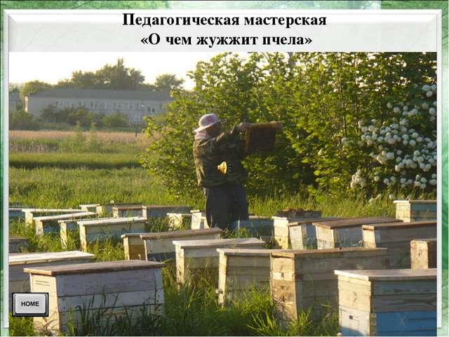 Педагогическая мастерская «О чем жужжит пчела»