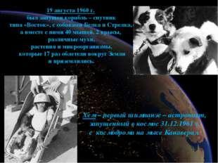 19 августа 1960 г. был запущен корабль – спутник типа «Восток», с собаками Бе