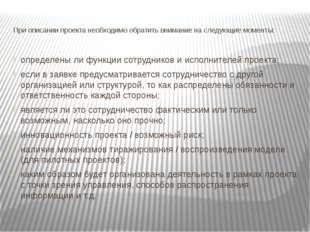 При описании проекта необходимо обратить внимание на следующие моменты: опред
