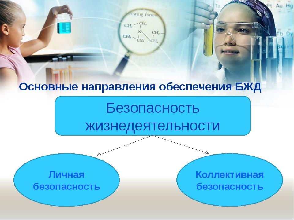 Основные направления обеспечения БЖД Безопасность жизнедеятельности Личная бе...
