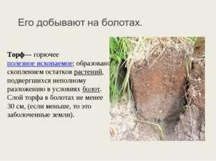 Торф— горючее полезное ископаемое; образовано скоплением остатков растений, п
