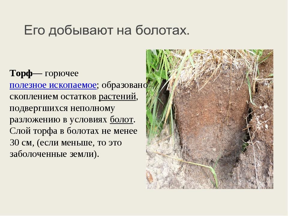 Торф— горючее полезное ископаемое; образовано скоплением остатков растений, п...