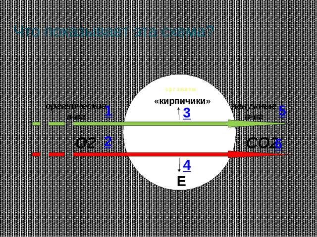 Что показывает эта схема? 1 2 3 4 5 6
