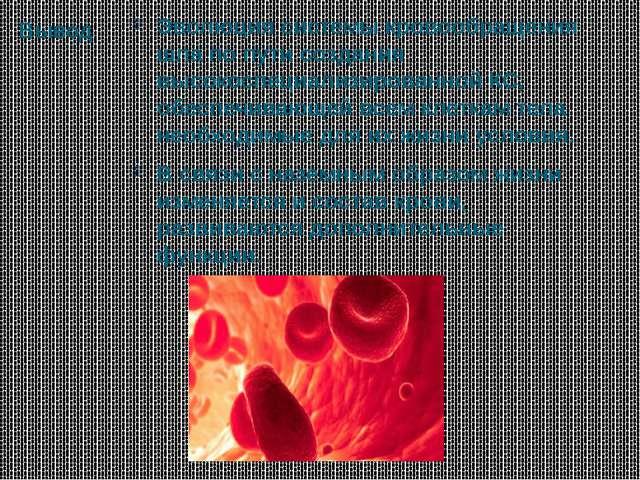 Вывод Эволюция системы кровообращения шла по пути создания высокоспециализиро...