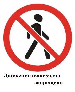 http://gamejulia.ru/images/i/dvizhenie-peshehodov.jpg