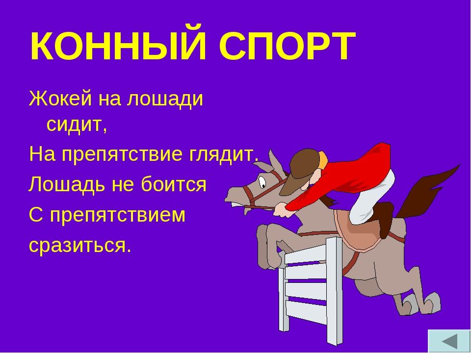 КОННЫЙ СПОРТ Жокей на лошади сидит, На препятствие глядит. Лошадь не боится С...
