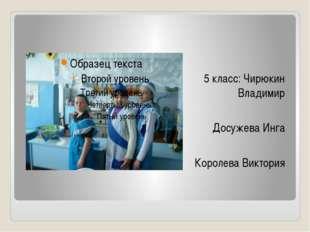 5 класс: Чирюкин Владимир Досужева Инга Королева Виктория